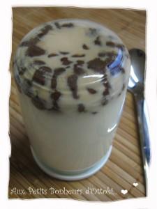 yaourt pépites de chocolat