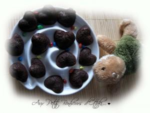 Gâteaux chocolat de la Turtle