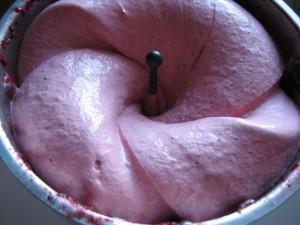 Sorbet pur fruit