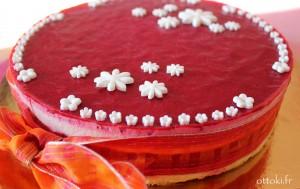 Gâteau Nicole sur site