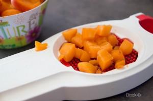 abricot-3
